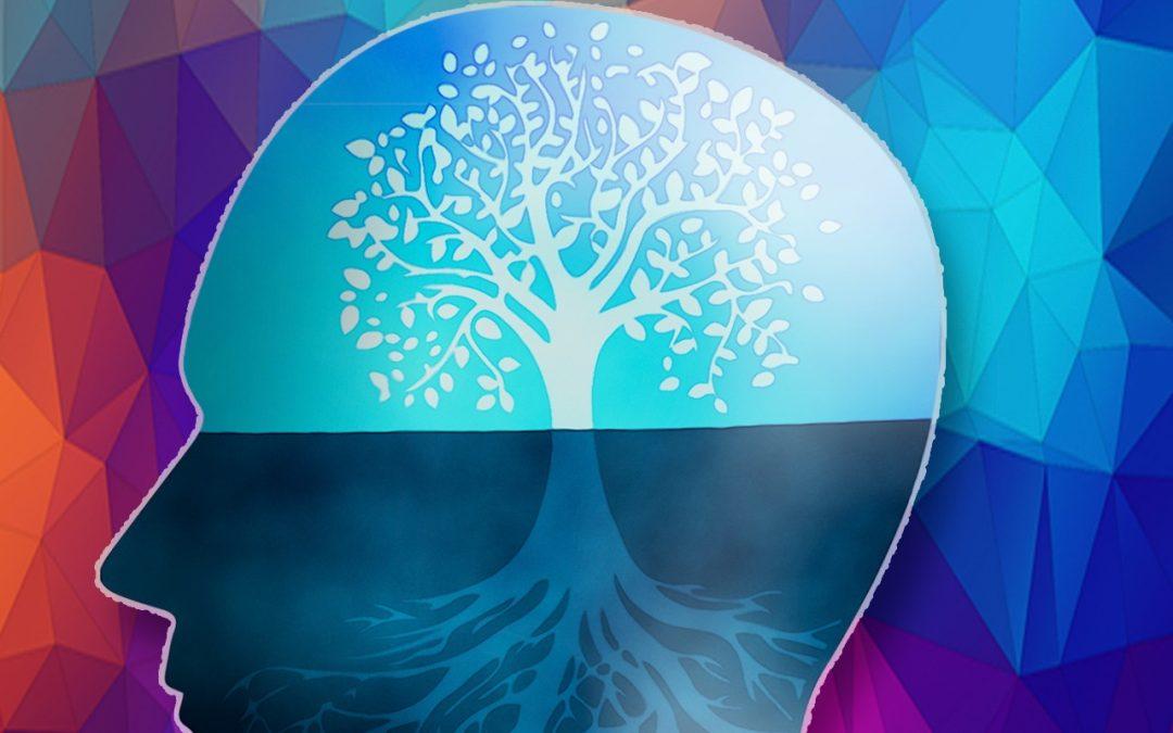 Mindset: uma tendência para atrair o sucesso